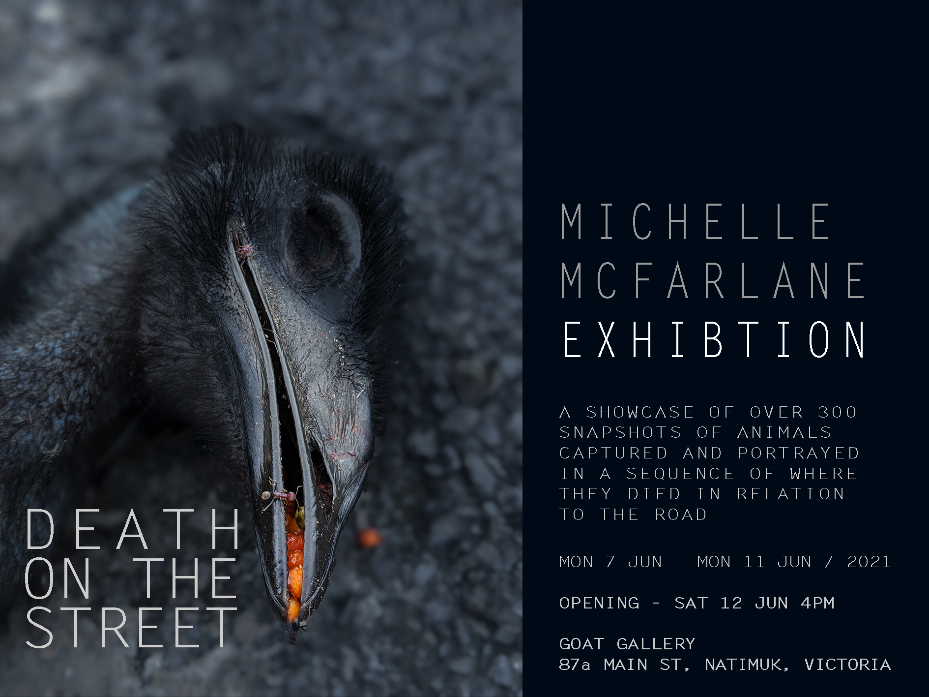 'Death on the Street' Upcoming Exhibition launch at Goat Gallery